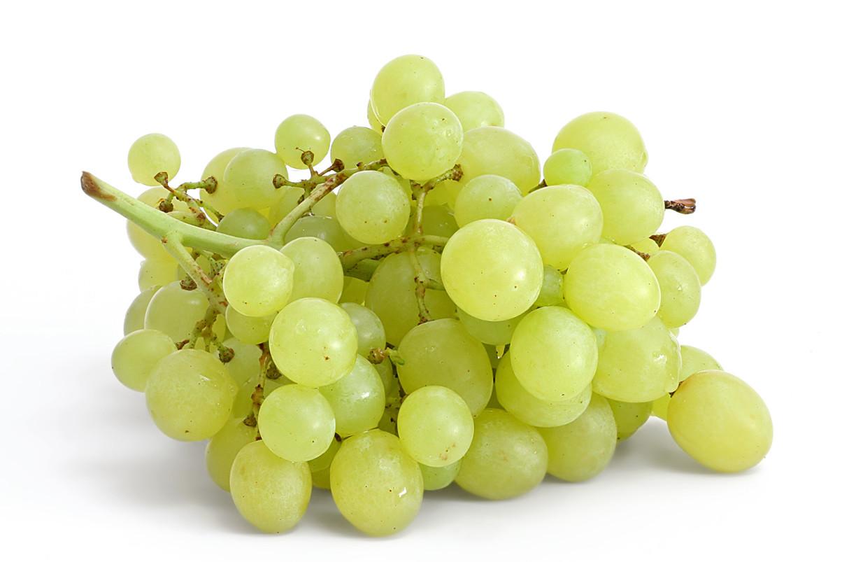 Table_grapes_on_white1-e1435924889978.jp